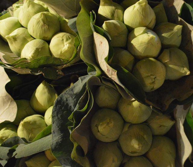Bangkok Night Market Montage David Bonnie Bangkok Thailand davidbonnie.com